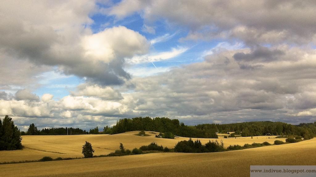 suomalainen pelto