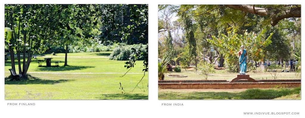 Suomalainen ja intialainen puisto