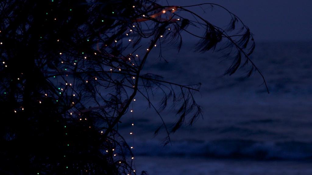 Goan iltahämärää