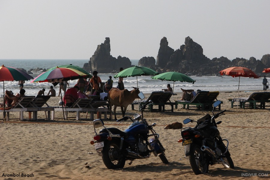 Arambol Beach, Goa, India