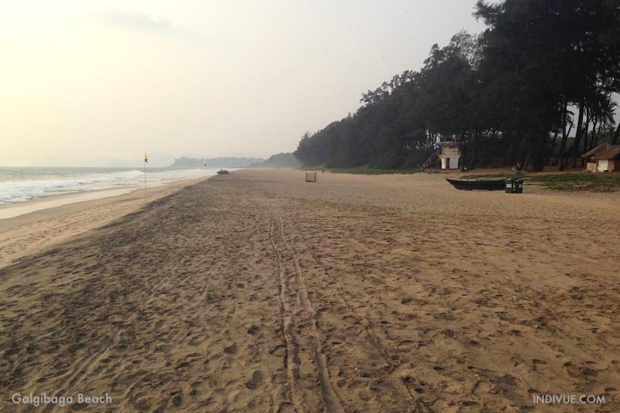 Galgibaga Beach, Goa, India