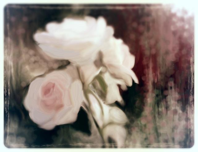luonnos ruusuista