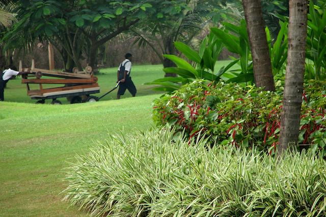 Park Hyatt -hotellin puutarhureita työssään