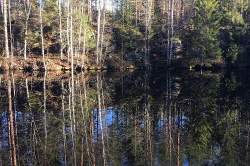 Suomen luontoa tällä hetkellä