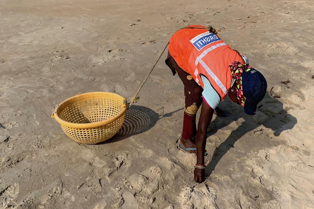 Rantasiivooja siivoamassa Goan rantaa