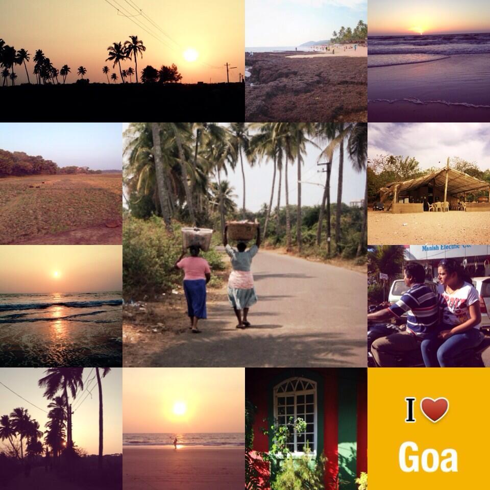 Indivue tweettaa Goasta
