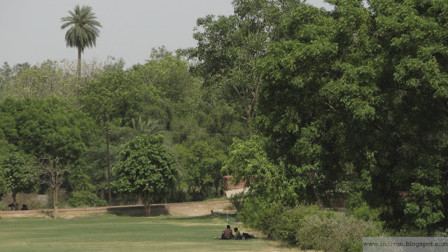 Vihreä Delhi, Intia