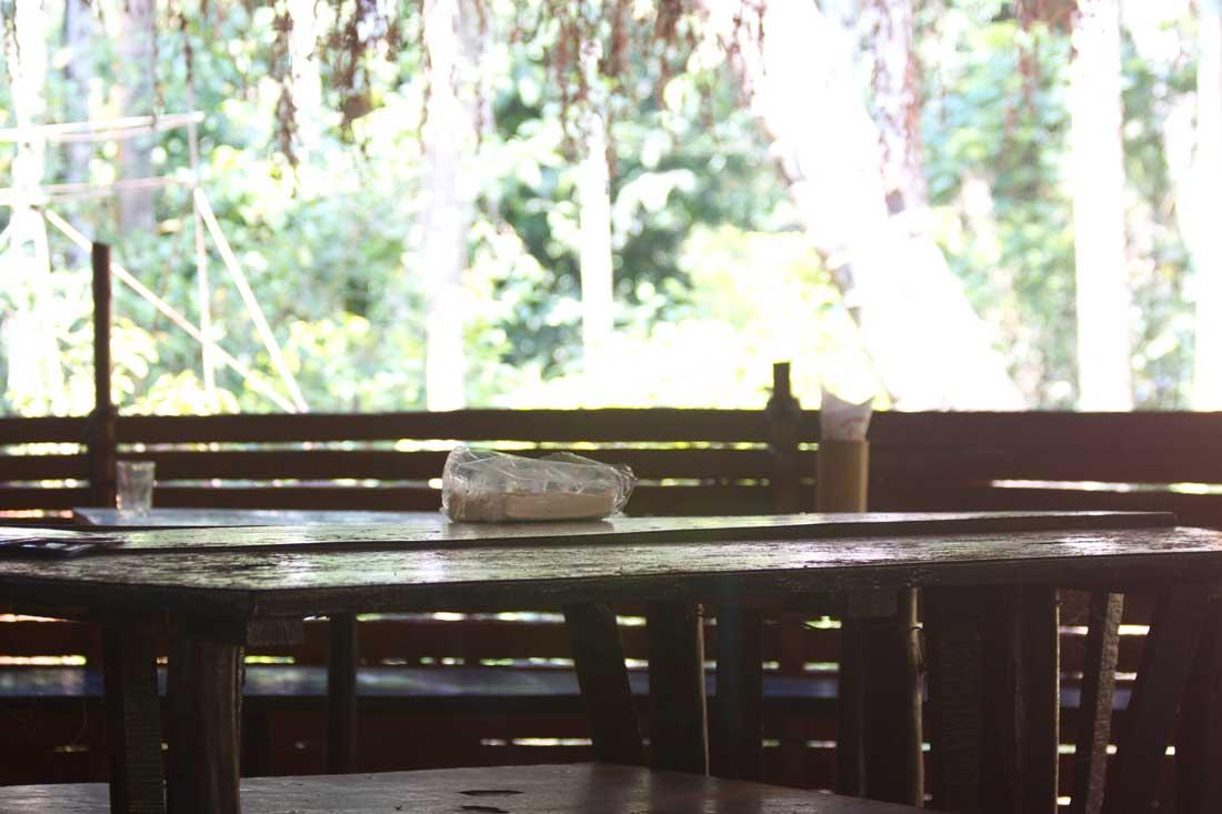 Sahakari Spicefarm -ravintola Goassa palmujen alla