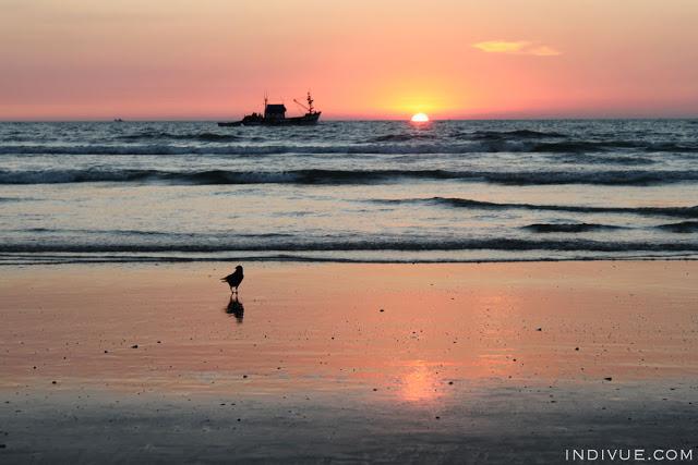 Kaunis auringonlasku Goan rannalla sekä lintu ja kalastusvene