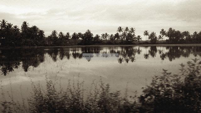 Baga-joen varrella Goassa