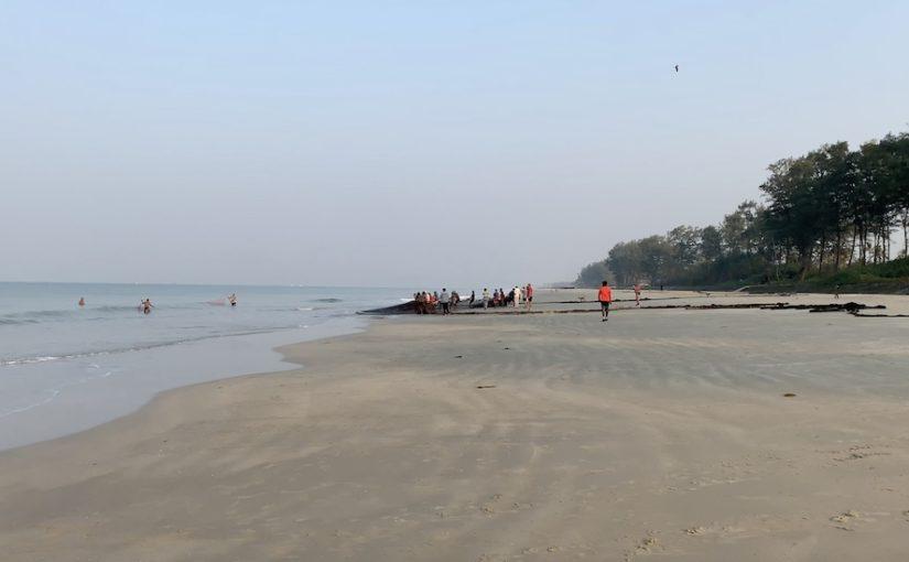 Etämatkailua Goassa ja Intiassa