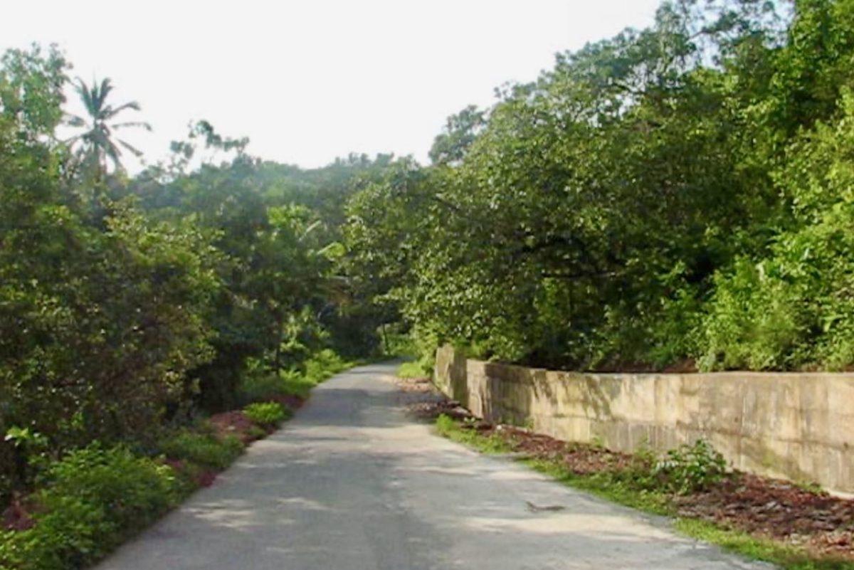 Maantie Etelä-Goassa