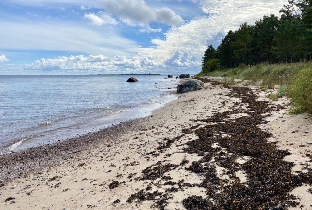 Pranglin saari Virossa